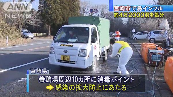 00480_miyazaki_tori_influenza_201412_05.jpg