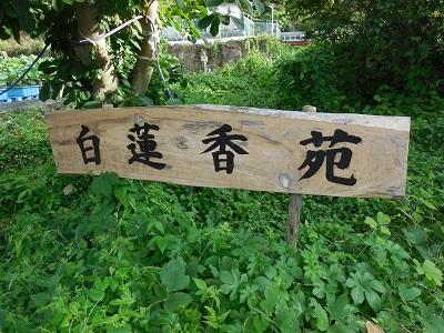 蓮興寺(2)