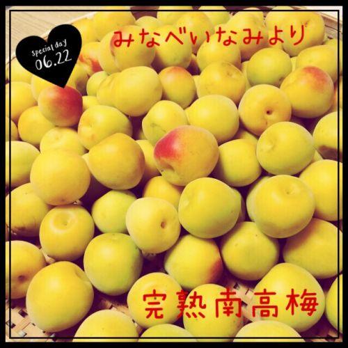 minabe1.jpg