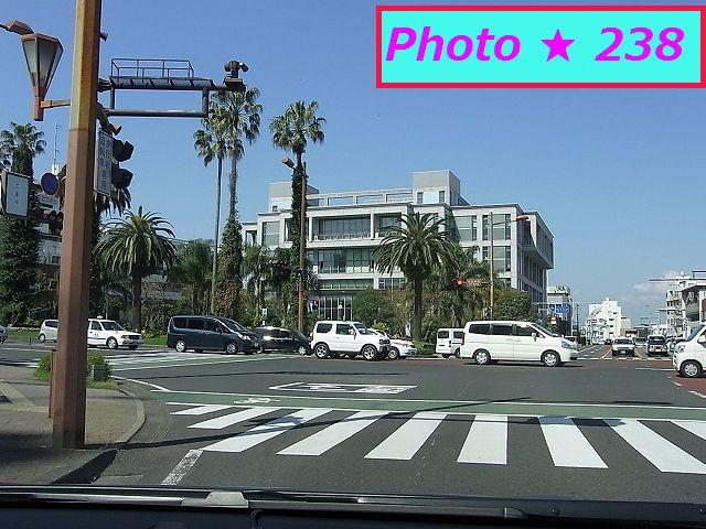 市役所前の道