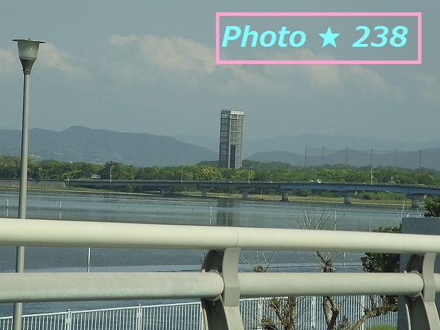 浜名湖花博覧の展望台