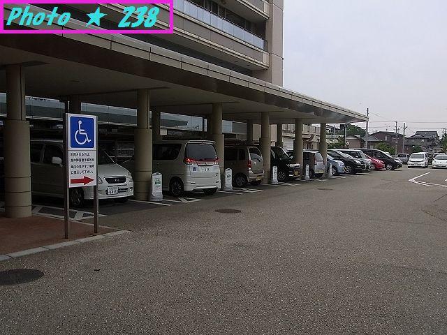 今日の駐車場