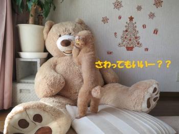 IMG_1588.jpg
