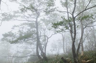 s-06・07赤城山 (19)