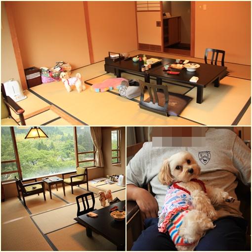 望川閣お部屋