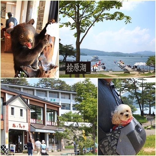 檜原湖ランチ②