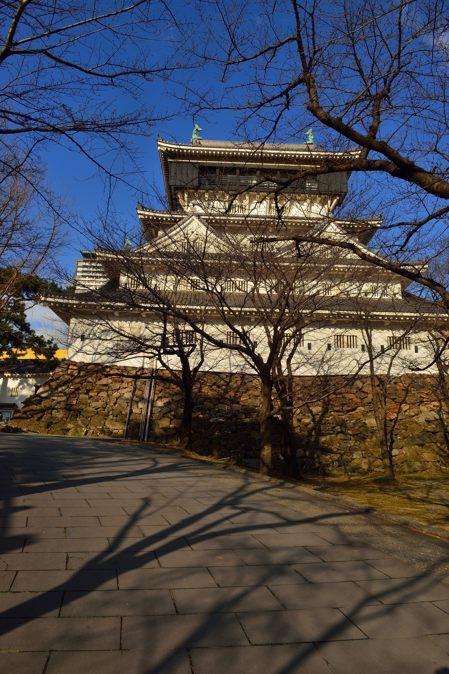 2015-01-24_0020-450.jpg