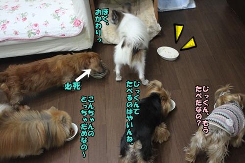 2015041801IMG_.jpg