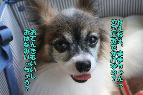 IMG_000004.jpg