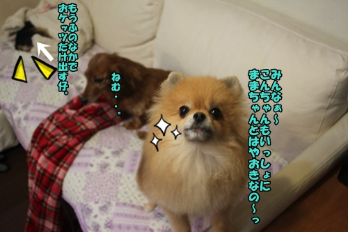 IMG_001_20150406124024d2b.jpg