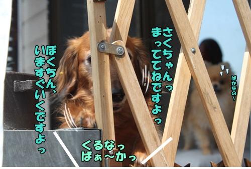 IMG_15042721.jpg