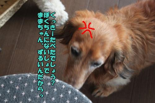 IMG_15050722.jpg
