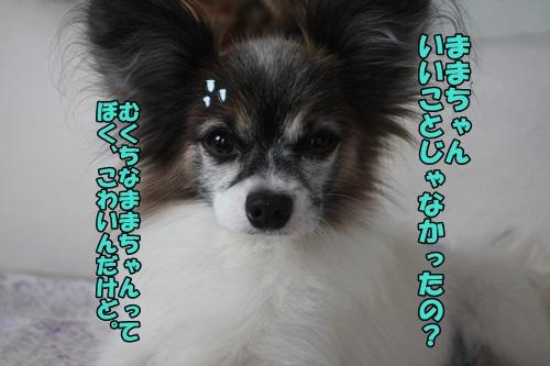 IMG_15051302.jpg