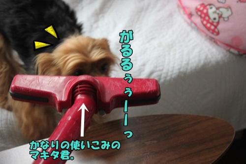 IMG_15051908.jpg
