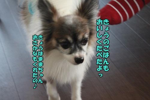IMG_2015041807.jpg