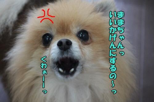 IMG_2015042103.jpg