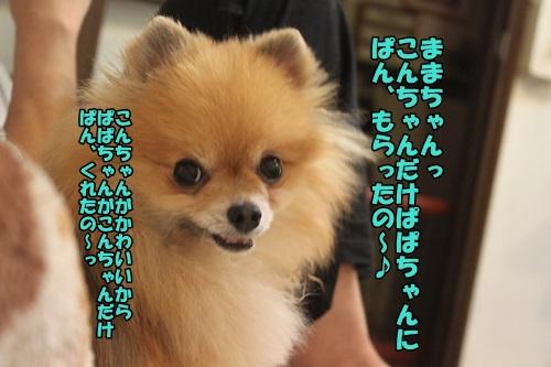 IMG_2843_201504022148008f8.jpg