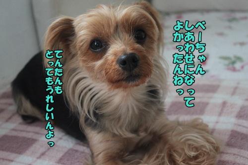 IMG_2915.jpg