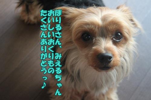 IMG_42130.jpg