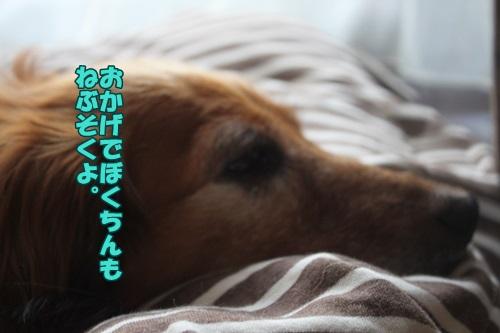 IMG_43480.jpg