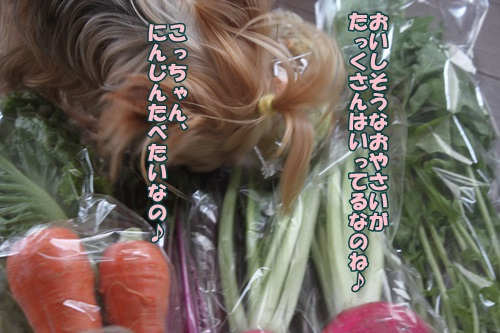 IMG_43840.jpg