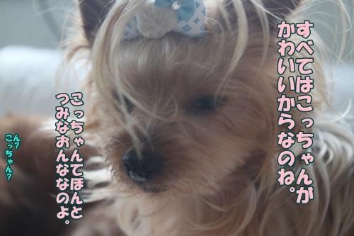 IMG_44650.jpg