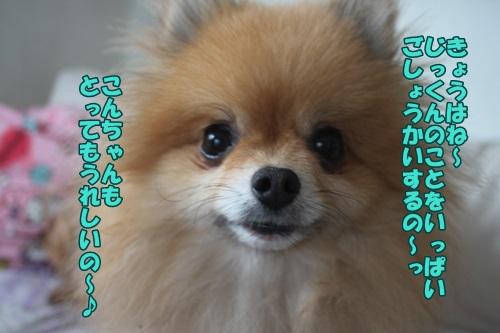 IMG_44890.jpg