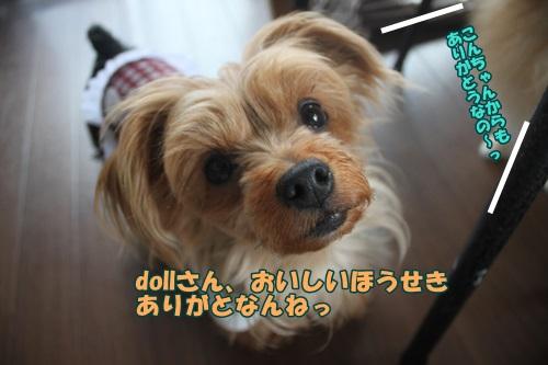 IMG_45690.jpg