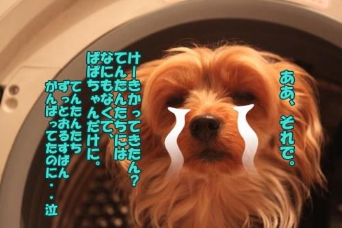 IMG_46400.jpg