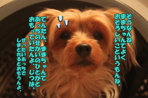 IMG_465300.jpg