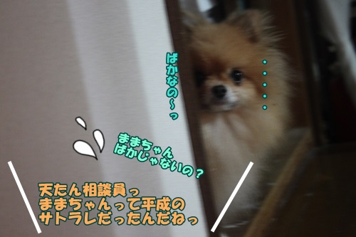 IMG_46740.jpg
