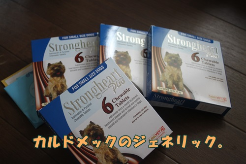 IMG_46940.jpg