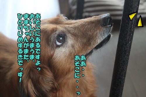 IMG_47920.jpg
