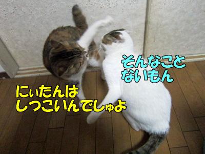 150211-03.jpg