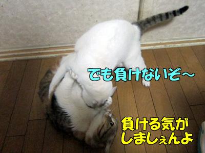 150211-09.jpg