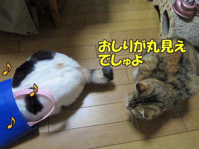150306-08.jpg
