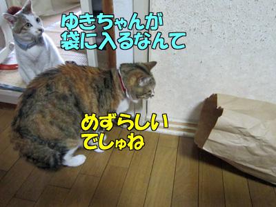 150503-09.jpg