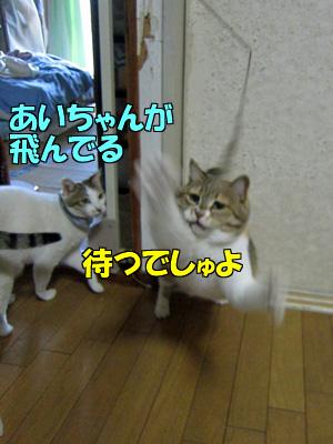 150510-02.jpg