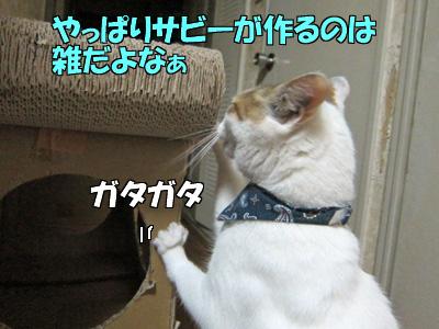 150529-06.jpg