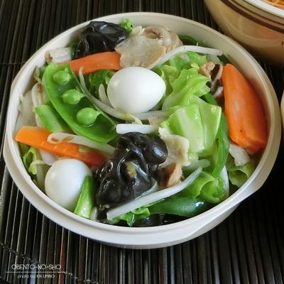ハウステンボス皿うどん弁当03