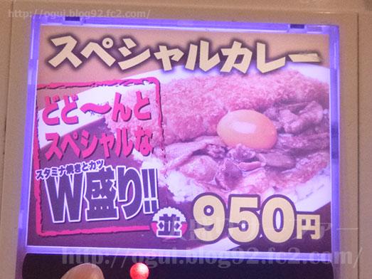 東京スタミナカレー365秋葉原スペシャルカレー001
