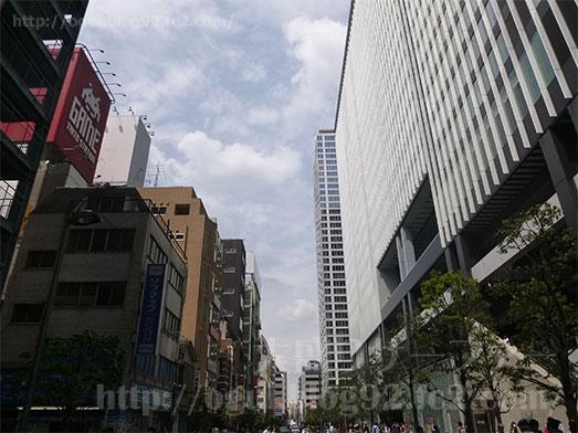 東京スタミナカレー365秋葉原スペシャルカレー003