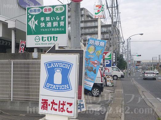 谷津Cafe緑の星アクアリウムヒロセペット004