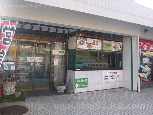 谷津Cafe緑の星アクアリウムヒロセペット005