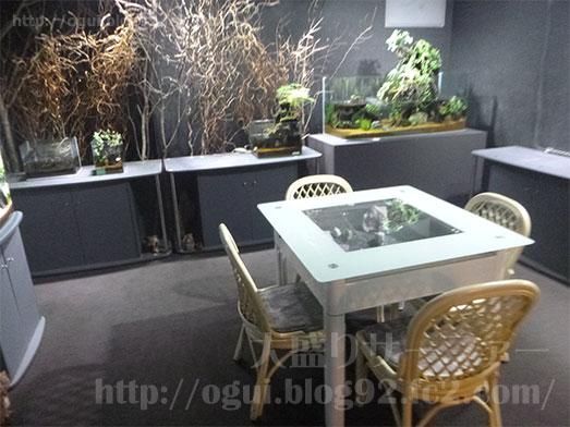 谷津Cafe緑の星アクアリウムヒロセペット010