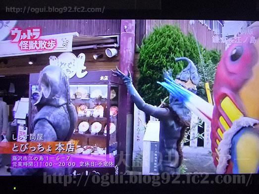 江の島しらす問屋とびっちょウルトラ怪獣散歩003