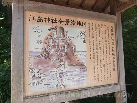 江の島しらす問屋とびっちょウルトラ怪獣散歩018