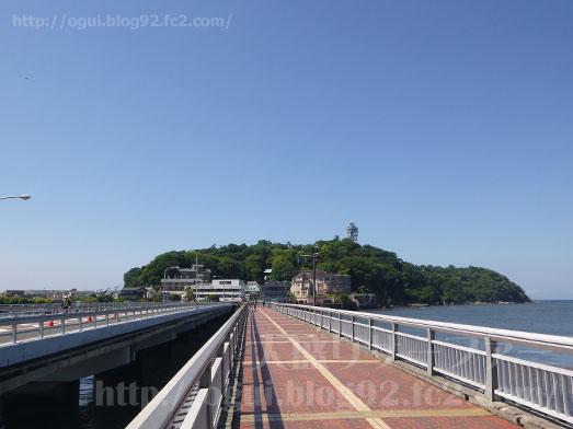 江ノ島とびっちょしらすのかき揚げ丼036