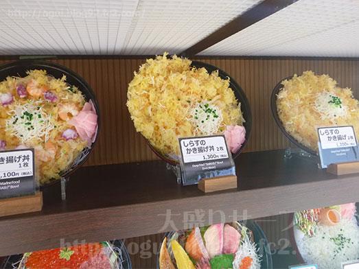 江ノ島とびっちょしらすのかき揚げ丼045