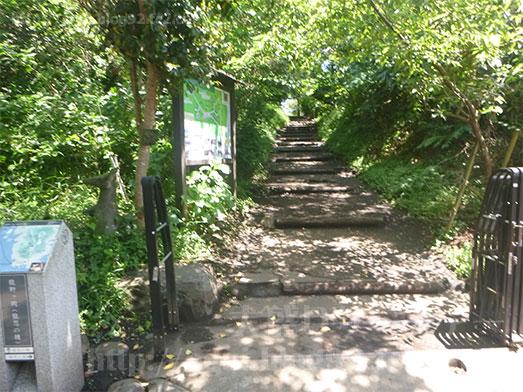 しらす問屋とびっちょランチ後に江の島散歩081